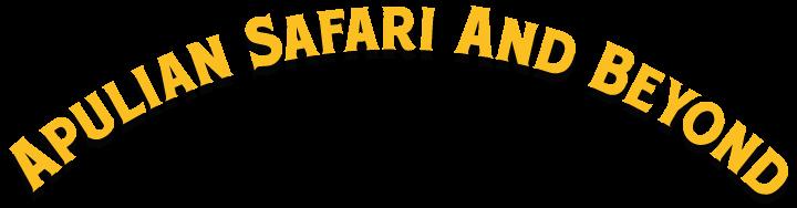 Dirigo Apulian Safari