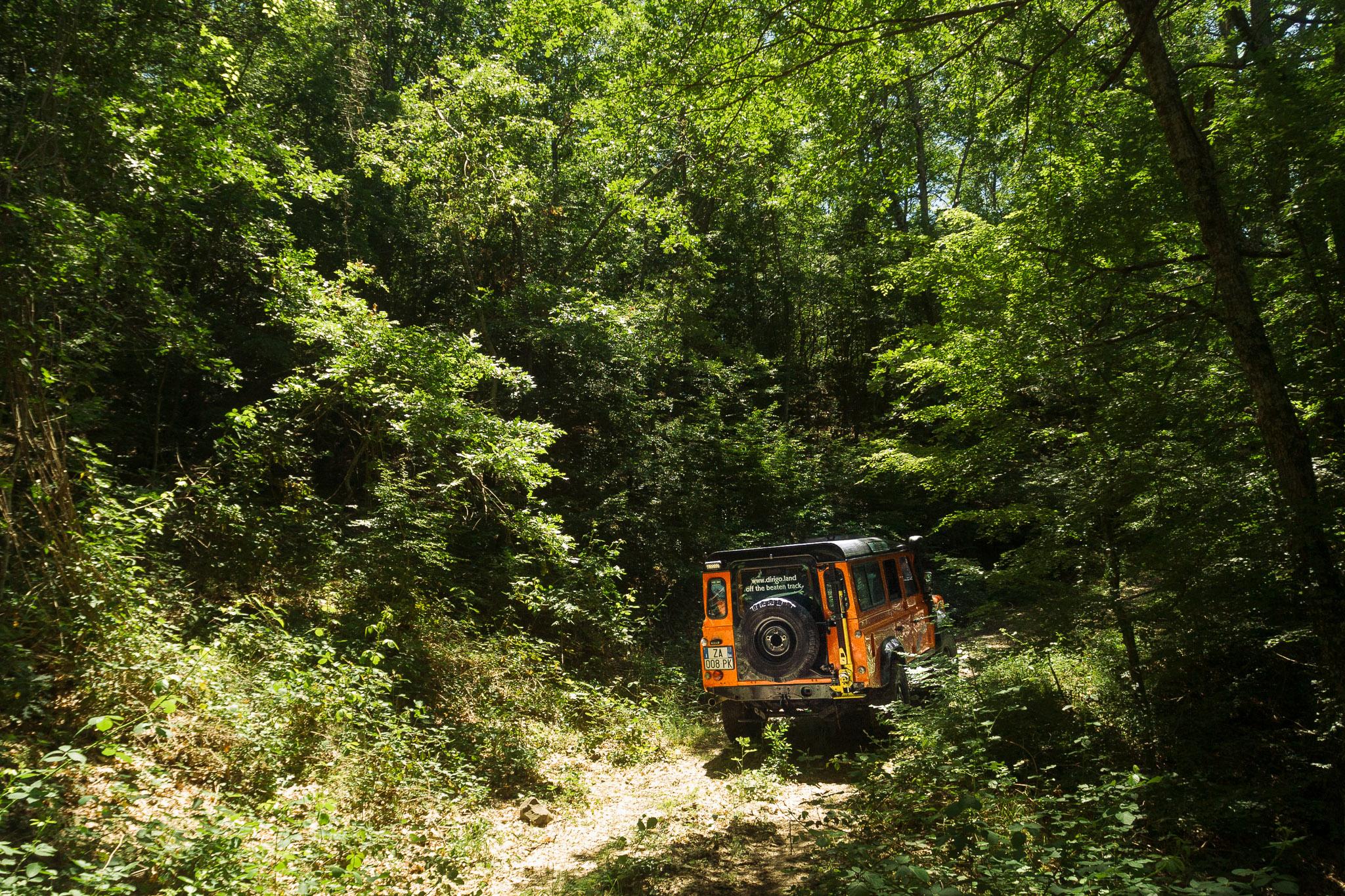 Dirigo Defender 110 entering the woods