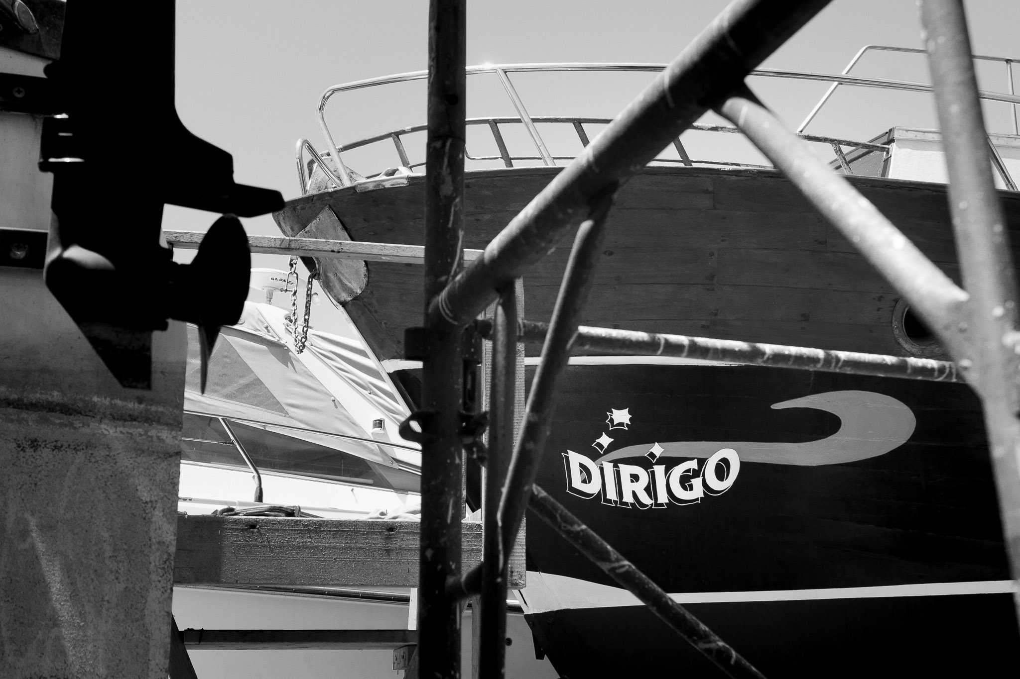 Dirigo Horizon hand painted logo on boats